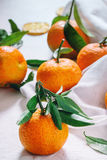 Tangerines with leaves Stock Photos