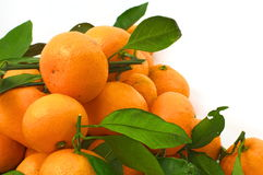 Tangerines with leaves in the lower left corner Stock Photos