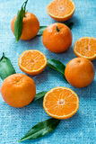 Tangerines with leaves over light blue background Stock Images