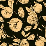Tangerines with leaves, seamless dark pattern. Hand drawn Royalty Free Stock Photo