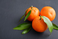 Tangerines with leaves Royalty Free Stock Photo