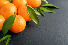 Tangerines with leaves Royalty Free Stock Photography