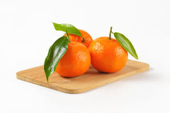 Tangerines with leaves Royalty Free Stock Image