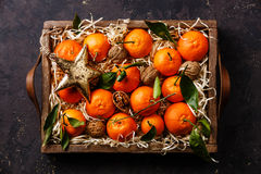 Tangerines with leaves and walnuts Stock Image