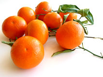 Tangerines with leaves on white 3 Stock Photos