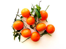 Tangerines with leaves on white Royalty Free Stock Images