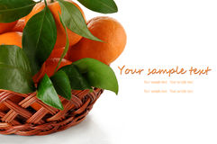 Tangerines with leaves in a wicker basket on a white background Royalty Free Stock Photo