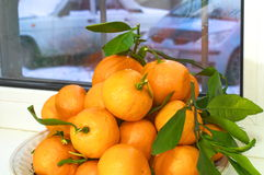 Mandarines with leaves. Winter behind the window. Stock Photos