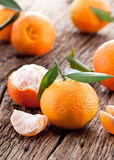 Tangerines with leaves. Royalty Free Stock Images
