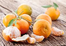 Tangerines with leaves. Royalty Free Stock Photos