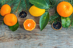 Tangerines, lemons and spruce branches. Royalty Free Stock Photos