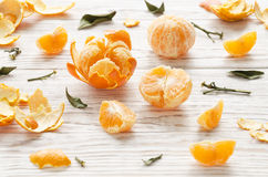 tangerines 1 livstid fortfarande Royaltyfri Fotografi