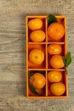 Tangerines or Mandarin orange Stock Images