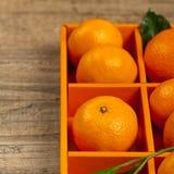 Tangerines or Mandarin orange Royalty Free Stock Photography