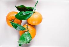 Tangerines, mandarines, clementines, cytrusa owoc z liśćmi na talerzu, flatlay - wieśniak, rocznik i zdrowy łasowania pojęcie, obraz royalty free