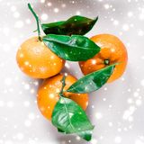 Tangerines, mandarines, clementines in winter holiday time, citrus fruits on plate with glowing snow and glitter on flatlay. Christmas, New Years Eve and food stock image