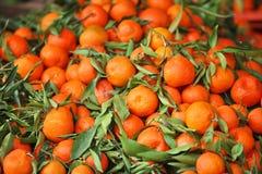 Tangerines – mandarins Royalty Free Stock Image