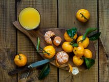 Tangerines citrus fruits with leaves. stock image