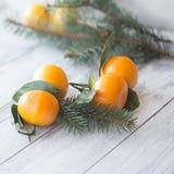 Tangerines mandarynka z liśćmi w białym talerzu na drewnianym tle z choinką zdjęcie royalty free