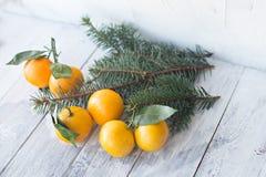 Tangerines mandarynka z liśćmi w białym talerzu na białym drewnianym tle z choinką obrazy royalty free