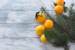 Tangerines mandarynka z liśćmi w białym talerzu na białym drewnianym tle z choinką zdjęcie stock