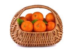 Tangerines med lämnar i en korg Fotografering för Bildbyråer