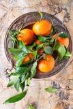 Tangerines med lämnar Fotografering för Bildbyråer
