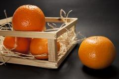 Tangerines na czarny tle Zdjęcia Royalty Free