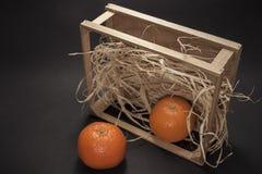Tangerines na czarny tle Obrazy Royalty Free