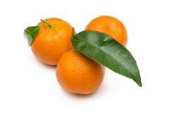 Tangerines no branco Imagens de Stock Royalty Free