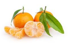 Tangerines odizolowywający na białym tle Zdjęcia Royalty Free