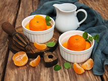 Tangerines and old juicer Stock Photos