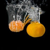 tangerines opuszczająca świeża woda zdjęcie royalty free