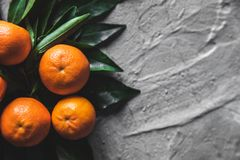 Tangerines oranges, mandarins, clementines, citrus fruits with leaves on gray cement background. stock photography