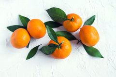 Tangerines. Oranges, mandarins, clementines, citrus fruits with leaves over rustic white stone background with copy space Stock Photos