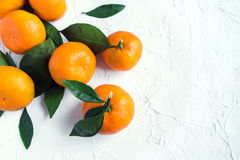 Tangerines. Oranges, mandarins, clementines, citrus fruits with leaves over rustic white stone background with copy space Royalty Free Stock Photos