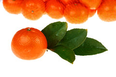 Tangerines packed Stock Photo