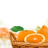 Tangerines. Photo of tangerines with slice in a basket Stock Photography