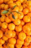 Tangerines pomarańcze Zdjęcia Stock