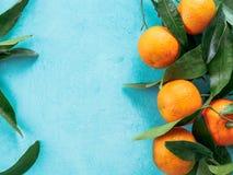Tangerines, pomarańcze, mandarynki na błękitnym tle Obraz Royalty Free