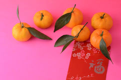 Tangerines and red packets Stock Photography