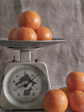 Tangerines on scales Stock Images