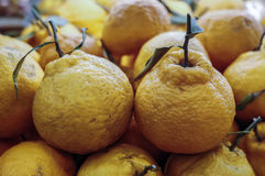 Tangerines. Several fresh Tangerines in supermarket stock images