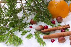 Tangerines snow hazelnut cinnamon winter spruce christmas Royalty Free Stock Photography