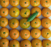 Tangerines stacked Royalty Free Stock Photos