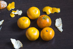 Tangerines and their skins Stock Images