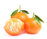 Tangerines with twigs and peeled. Royalty Free Stock Image