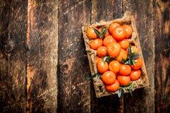 Tangerines w starym pudełku Obraz Stock