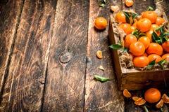 Tangerines w starym pudełku Fotografia Stock