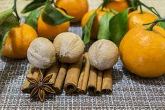 Tangerines, walnuts, cinnamon sticks and star anise. stock images